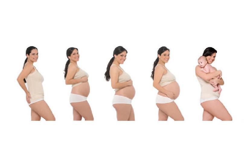cuerpo durante el embarazo